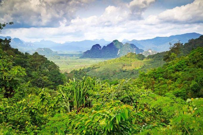 Пхукет Таиланд экскурсии 2016 цены