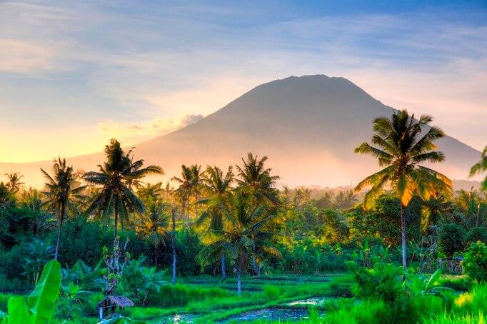 Отдых на Бали отзывы туристов 2020