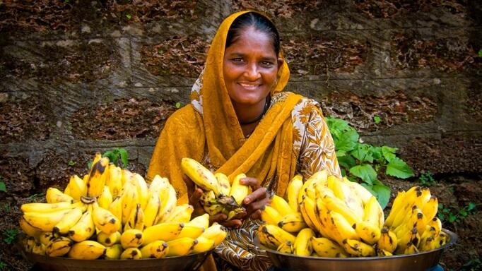Цены на фрукты на Гоа, Индия