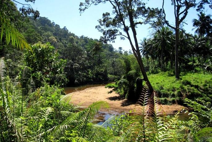 Что посмотреть на Шри-Ланке отзывы туристов