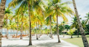 Куда поехать отдыхать летом 2018 на море недорого и безопасно