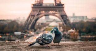 Лучшие экскурсии Парижа на русском языке